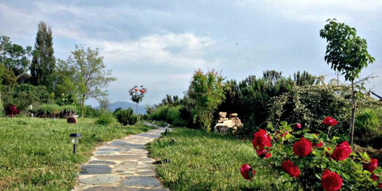 03-s534-garden alley-casa palazzetto