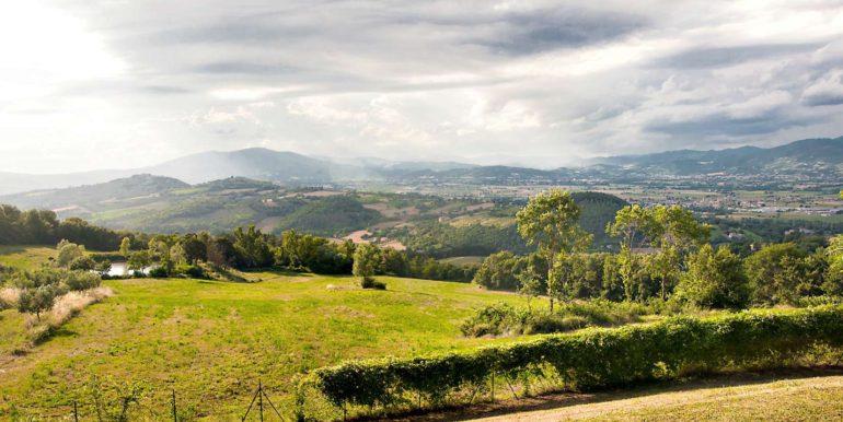 19-s527-panorama view