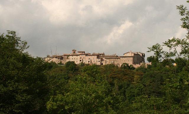 5-panoramic view