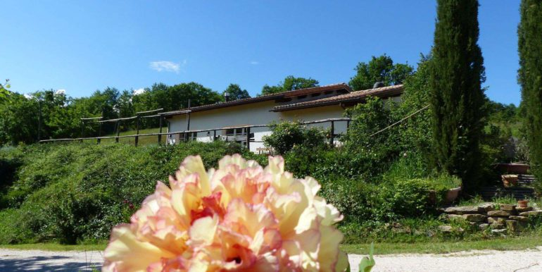 6 oca blu_garden and outside of property