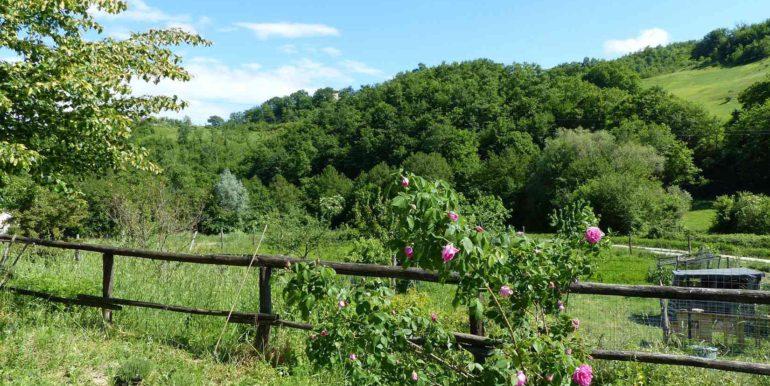 8 oca blu_view from garden