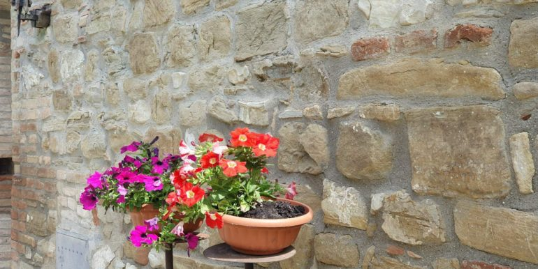 20-s565-stone wall and flowers