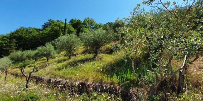 21-s577-garden-agritursimo del castello