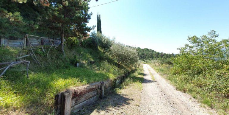 22-s577-driveway-agriturismo del castello