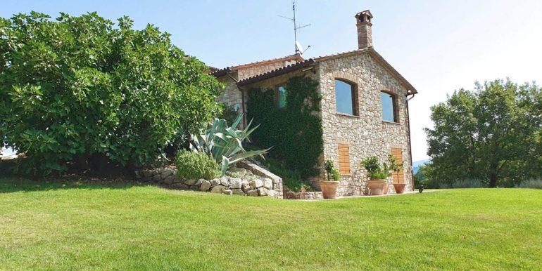 7-s679-garden and house- Macchiolina