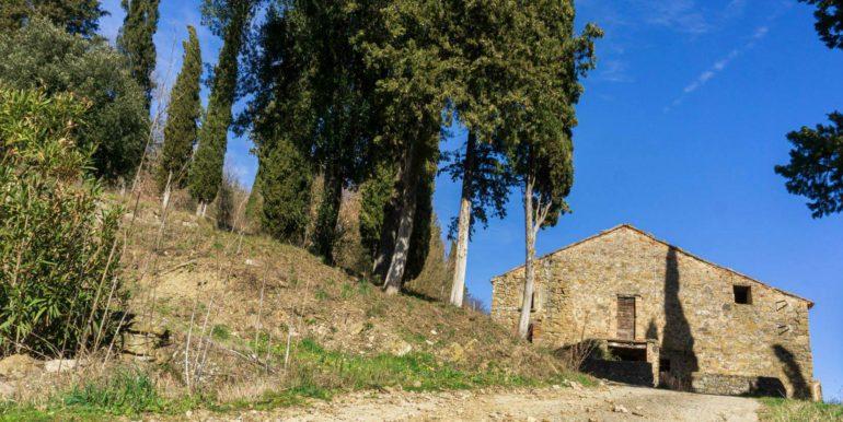 13-s584-driveway and villa-villa schine