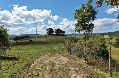 Vendita azienda agricola Gubbio - il Faggeto