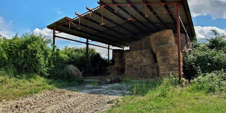5-s592-azienda agricola il faggeto vendita gubbio_via dei colli